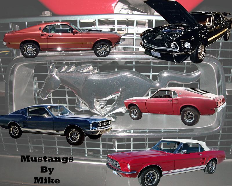 Mustang2.jpg