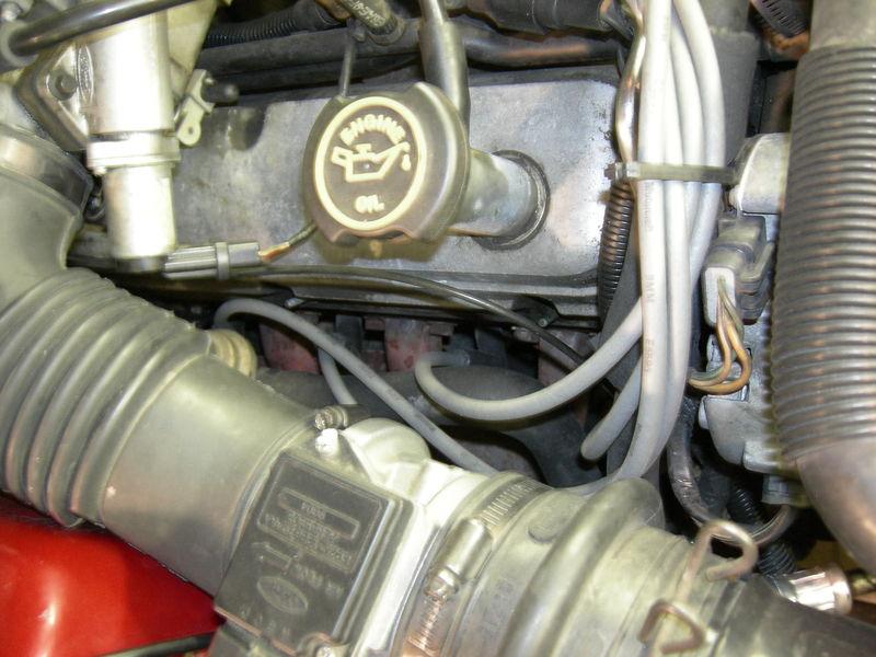 DSCN7750.JPG